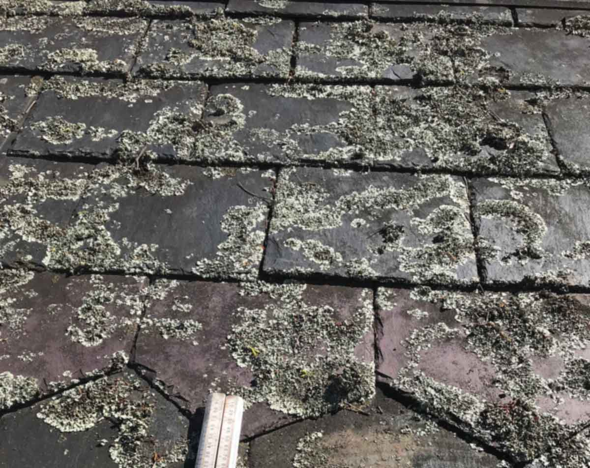 Slate Roofing Melbourne